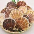 北海道産天然ホタテ貝100%のホタテ貝の殻です。殻の不純物を丁寧に取り除き乾燥させ、微粉末にしたものがホタテカルシウムです。カルシウムをはじめ亜鉛、銅、マンガンなどミネラルを多く含みます。